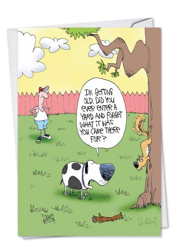 Old Dog Birthday Greeting Card By Nobleworks